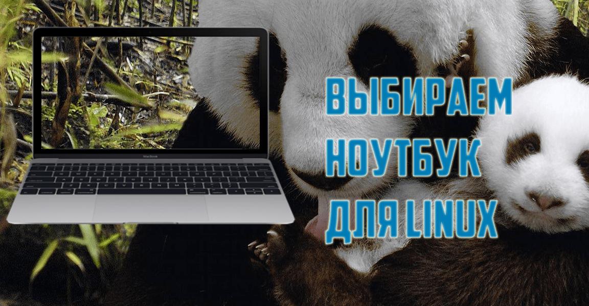 Лучший ноутбук для Linux