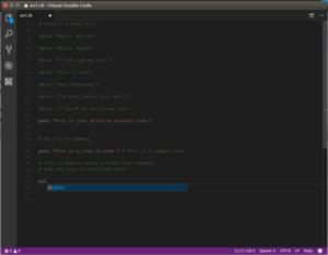 Рисунок 2: Ruby код Rookie в Visual Studio Code